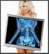 pamela-anderson-make-money-online